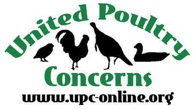 United Poultry Concerns is a nonprofit organization dedicated to the compassionate and respectful treatment of chickens, turkeys, ducks and other domestic fowl. We hold that the treatment of these birds in the areas of food production, science, education, entertainment, and humane companionship situations has a significant effect upon human, animal, and environmental welfare. We seek to make the public aware of the ways in which poultry are used, and to promote the benefits of a vegan diet and lifestyle. We provide information through our quarterly magazine Poultry Press, our Website at https://www.upc-online.org , and our sanctuary in Machipongo, Virginia on the Eastern Shore. We invite you to join us and support our work. (PRNewsFoto/United Poultry Concerns)