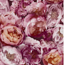 """<p>The big blousy florals of <a href=""""https://go.redirectingat.com?id=127X1599956&url=https%3A%2F%2Fwww.homebase.co.uk%2Fhouse-beautiful-blooming-pink-pop-wallpaper%2F12945377.html&sref=https%3A%2F%2Fwww.housebeautiful.com%2Fuk%2Fhouse-beautiful-collections%2Fg36172810%2Fhomebase-wallpaper%2F"""" rel=""""nofollow noopener"""" target=""""_blank"""" data-ylk=""""slk:Blooming Pink Pop"""" class=""""link rapid-noclick-resp""""><strong>Blooming Pink Pop</strong></a> will be a ravishing addition to your home. The rich colours and flourishing petals will completely transform bland walls, making it a great choice for those who want a grand, flamboyant look.</p>"""