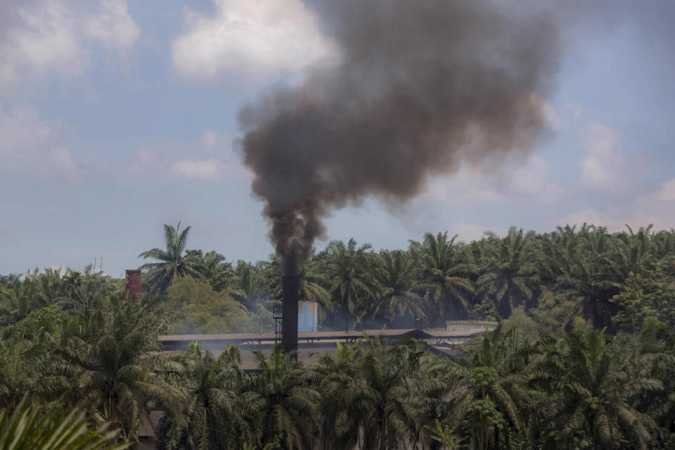 Smoke rises from a processing mill at a palm oil plantation in Sumatra, Indonesia, Saturday, Sept. 8, 2018. Though labor issues have largely been ignored, the punishing effects of palm oil on the environment have been decried for years. (AP Photo)