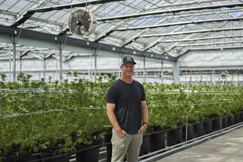 Graham Farrar en Glass House Farms, empresa que él dirige y opera invernaderos para el cultivo legal  de marihuana en California. (Philip Cheung for The Washington Post via Getty Images)