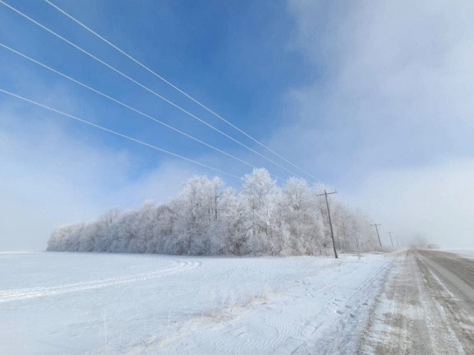Rime Ice: David Piano (@ONwxchaser) - submitted via Mark Robinson