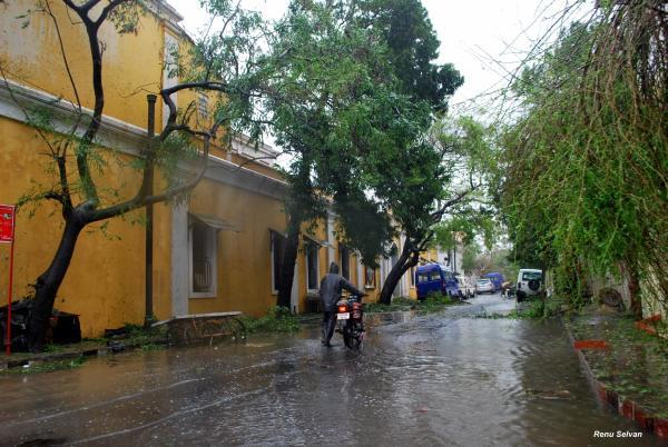 Streets of Puducherry after Cyclone Thane ripped through them. Photo by Yahoo! reader Ananda Raj