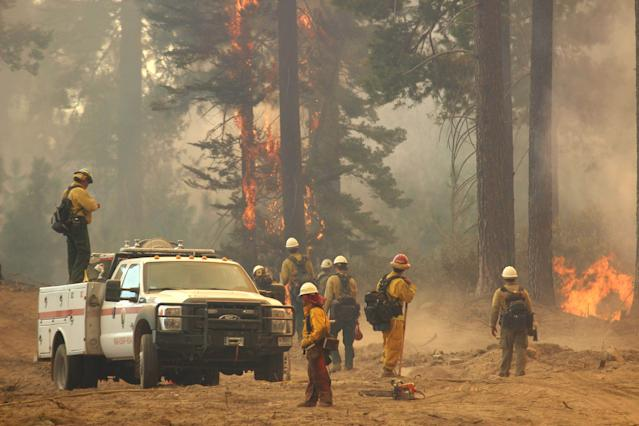 In this Friday, Aug. 30, 2013 photo provided by the U.S. Forest Service, a fire crew stands watch along a fire break near a burn operation on the southern flank of the Rim Fire near Yosemite National Park in California. The wildfire burning in and around Yosemite National Park has become the fourth-largest conflagration in California history. (AP Photo/U.S. Forest Service, Mike McMillan)