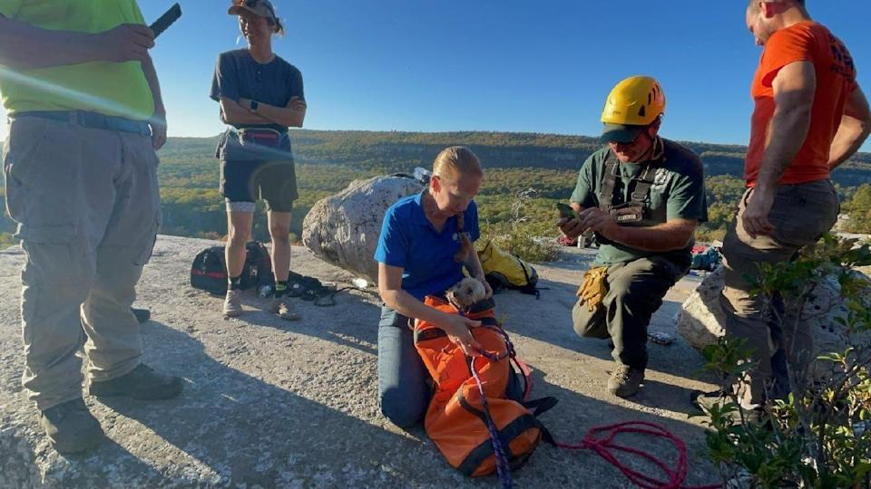 A 12-year-old dog, Liza, was rescued near Gertrude's Nose Trail in Minnewaska State Park Preserve in Ulster County on Tuesday, Oct. 12, 2021, after failing into a deep crevice.