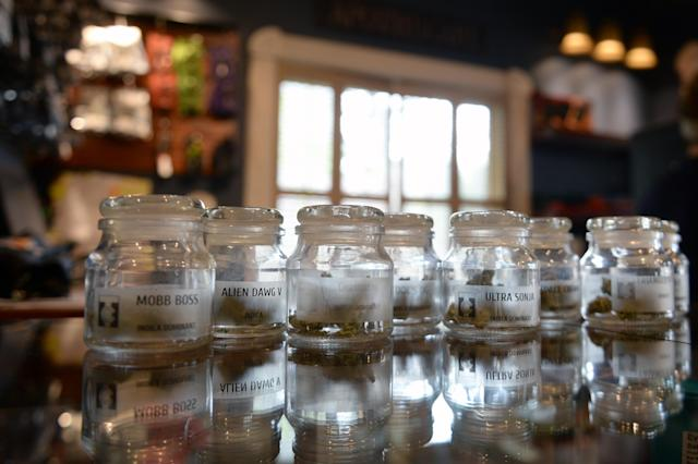 Cannabis at the Health Center in Denver. (Photo: Vince Chandler/The Denver Post)