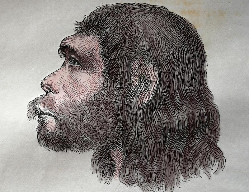 Comparing Neanderthal and modern skulls, researchers from the University of York found that the brow ridge changed over time to make for more mobile eyebrows, as they are fundamental in expression. (Photo: Alamy Stock Photo)