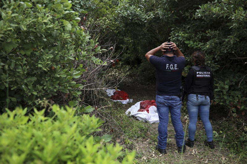 Investigators look at human remains placed in red evidence bags, dug from a clandestine grave site in Arbolillo, Veracruz state, Mexico, Friday, Sept. 7, 2018. One day after authorities in the Mexican state of Veracruz announced the discovery of at least 166 skulls in mass graves, journalists who arrived at the site Friday discovered it was the same location where authorities said they had found 47 bodies the previous year. (AP Photo/Felix Marquez)