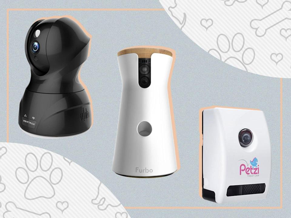 <p>Choose from food dispensers, interactive gadgets and two-way audio systems </p> (iStock/The Independent)