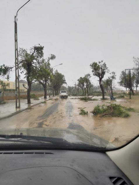 A view of fallen tree branches on a muddy street after cyclone Eloise in Beira