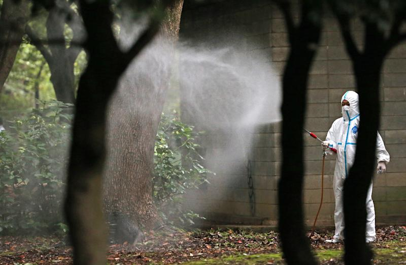 A worker sprays insecticide at Yoyogi Park, believed to be the source of a dengue fever outbreak, on August 28, 2014 (AFP Photo/Jiji Press)