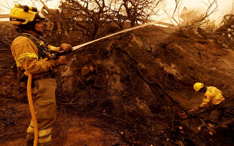 Firefighters tackle a blaze caused by the hot winds and dust on Tenerife - RAMON DE LA ROCHA/REX