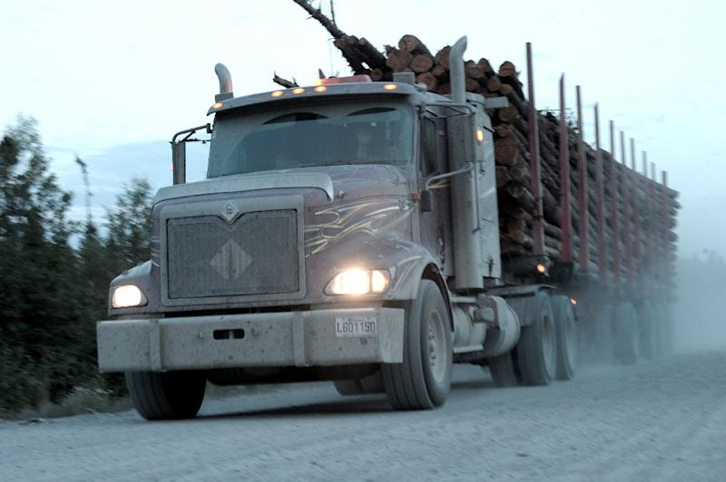 A logging truck carries wood from the boreal forest to a sawmill near the Broadback River in northern Quebec (AFP Photo/Clement Sabourin)