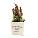 """<p><strong>Lenny Mud</strong></p><p>lennymud.com</p><p><strong>$16.00</strong></p><p><a href=""""https://lennymud.com/products/schitts-creek-rose-apothecary-indoor-planter-container"""" rel=""""nofollow noopener"""" target=""""_blank"""" data-ylk=""""slk:Shop Now"""" class=""""link rapid-noclick-resp"""">Shop Now</a></p><p>For the plant moms and dads out there, try this super cute lil' planter. You can put a fake plant in there if watering's not really your jam, I won't tell a soul. </p>"""