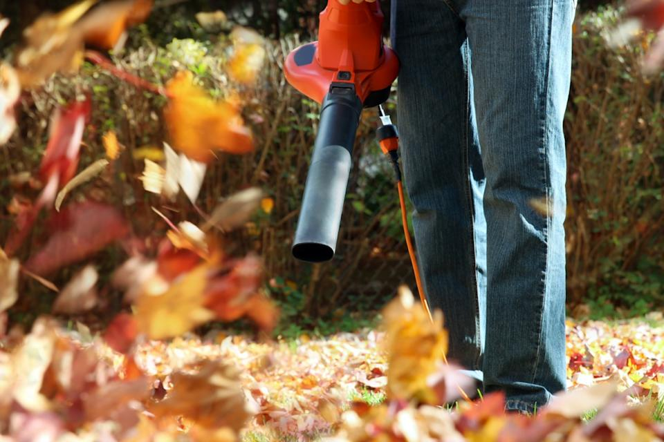 Man working with leaf blower