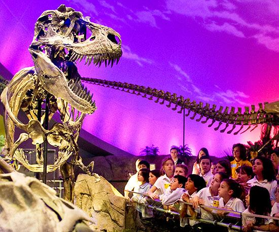 The 15 Best Children's Museums in the U.S.