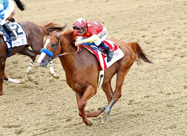 Justify's racing future has been put on hold just one month after winning the Triple Crown due to a front left ankle injury. (Getty Images)