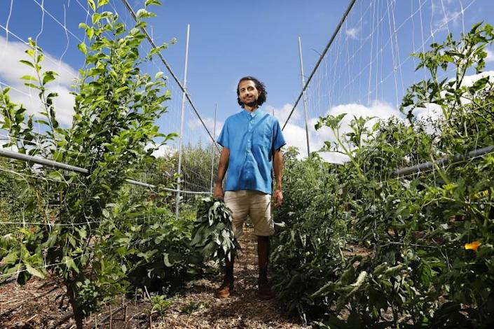 "Farmer Rishi Kumar stands in his fields in Pomona, where visitors can pick and buy fruit seasonally. <span class=""copyright"">(Christina House / Los Angeles Times)</span>"