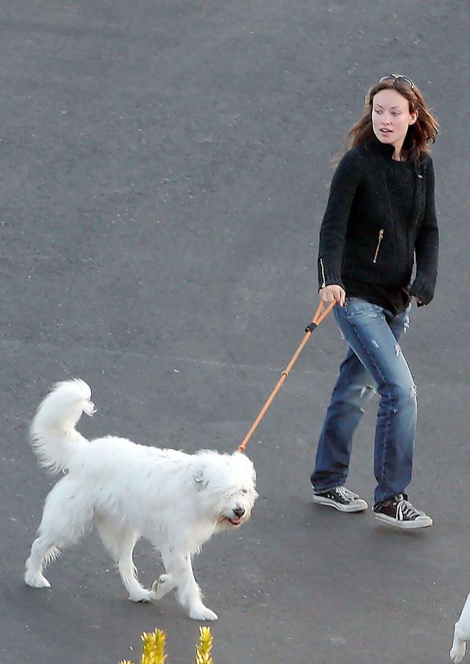 """Though she's been spotted with numerous A-list hunks, Wilde has stated on Twitter that her """"only boyfriend"""" is her dog, Paco. The pooch, which Wilde adopted from a shelter, is famous in its own right. Paco was the 2005 mascot for the clothing store Old Navy. That's right, even her dog is famous."""