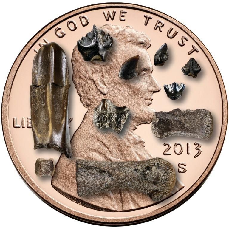 Baby dinosaur bones and teeth from the Prince Creek Formation in northern Alaska are seen against a US penny