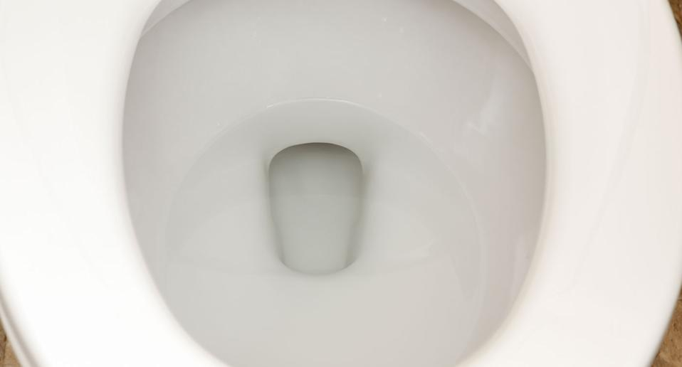 Toilet bowl pictured after woman fished festival-goers licence out of a public toilet in Perth.