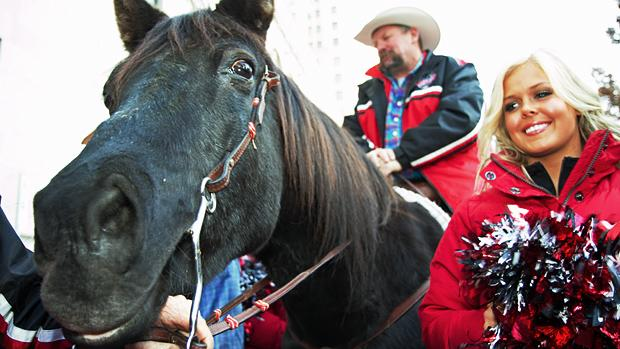 Fletcher Armstrong, chairman of the Calgary Grey Cup committee, and Ontario-bred horse Marty made a publicity stop outside the Royal York Hotel on Thursday.