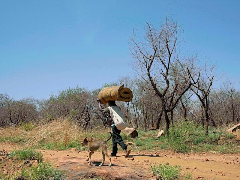 In South Sudan, close to one in five of the population has been displaced by the drought: AFP