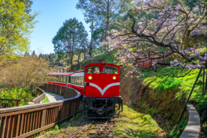 Alishan Mountain was also mentioned in the list. (Photo courtesy of Shutterstock)