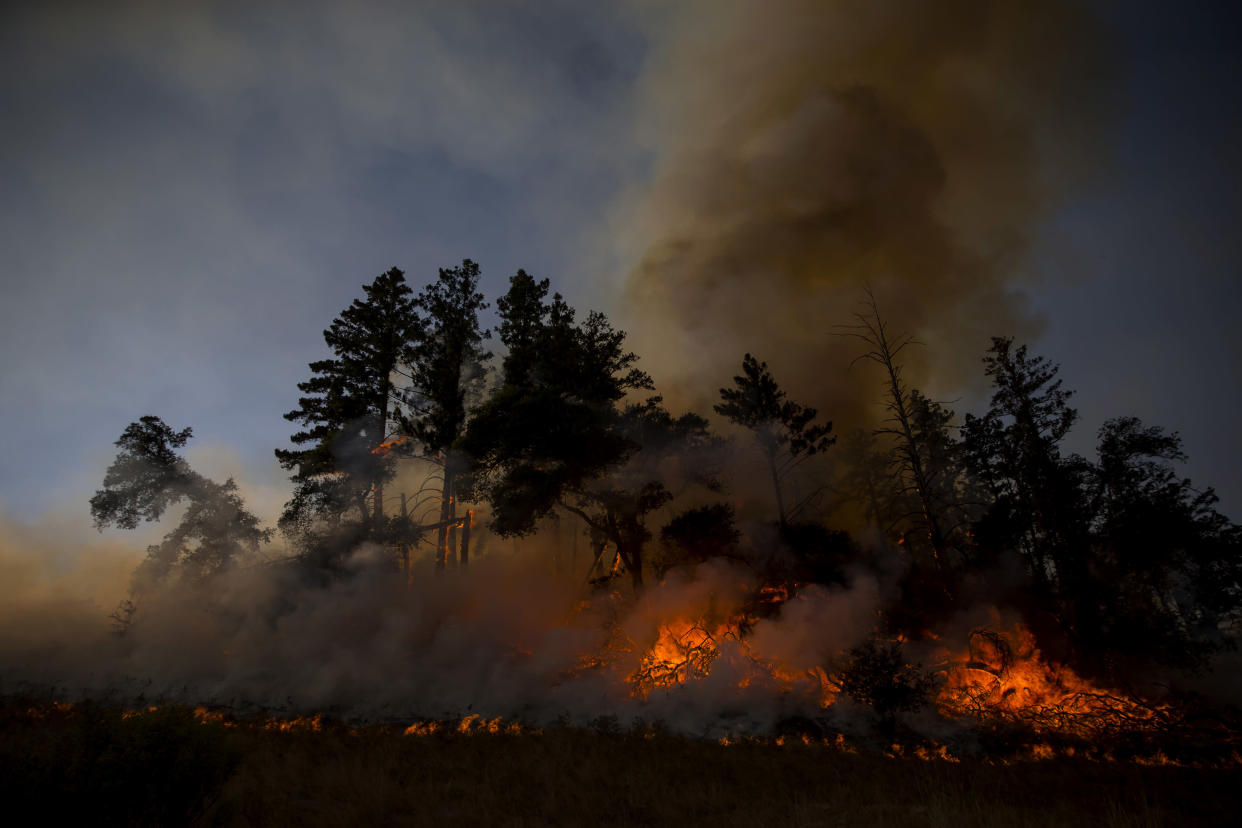 Firefighters burn brush ahead of the Kincade Fire in an effort to reduce fuel and increase containment in Geyserville, Calif., Oct. 26, 2019. (Eric Thayer/The New York Times)