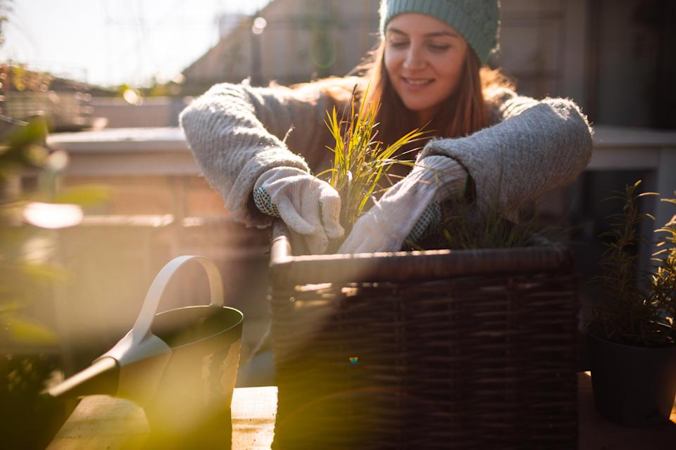Here's how to 'put your garden to bed' for winter [Photo: Getty]