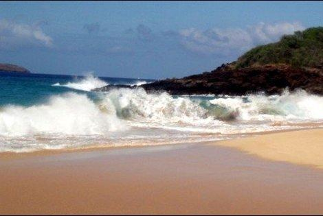 Beach in Maui. (Photo courtesy of K.C. Dermody.)