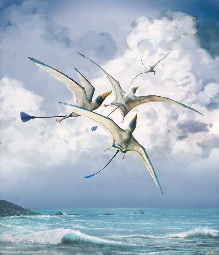 Illustration of group of pterosaurs flying over beach.