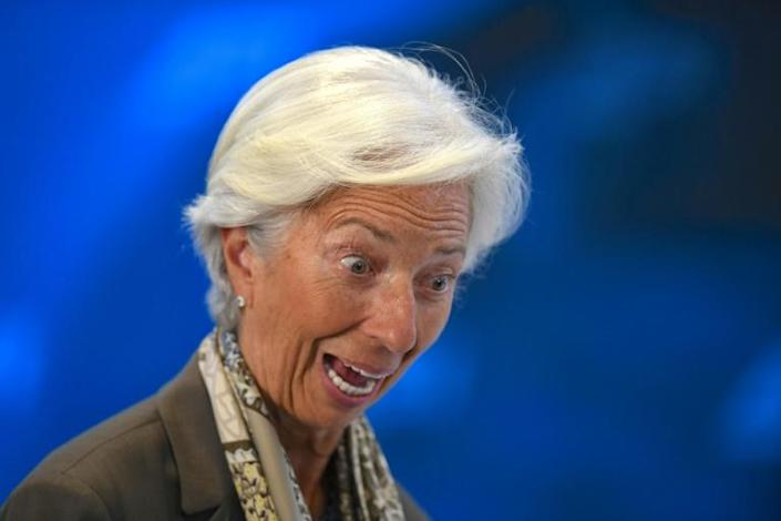 Lagarde's appointment also raises the question about the level of expertise needed to run a central bank (AFP Photo/Jim WATSON)