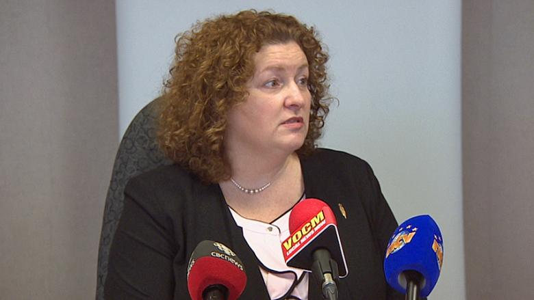 N.L. unveils tougher car and driver rules for taxi industry, but no background checks