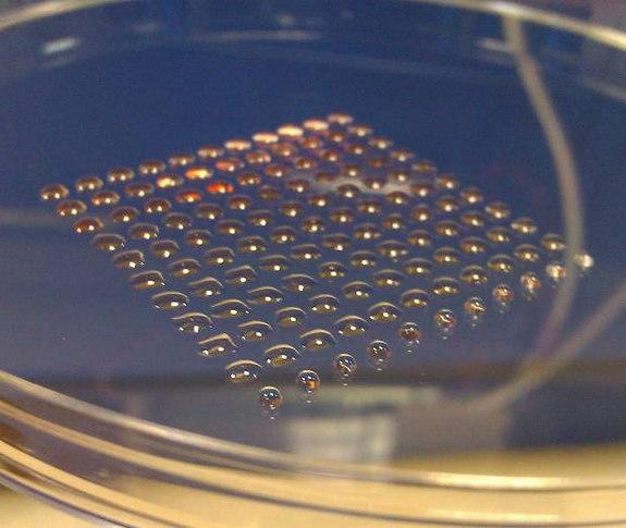 The printer was capable of printing uniform-size droplets of cells gently enough to keep the cells alive and maintain their ability to develop into different cell types.