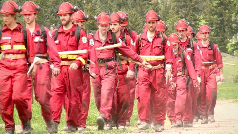 B.C. Wildfire Service expects crush of applications following busy year