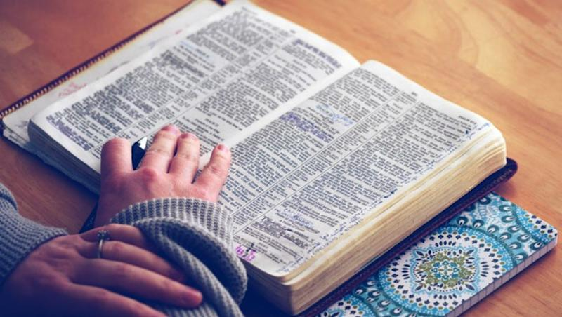 'Toxic' Is Oxford Dictionary's Word of 2018: Know the 8 Words Shortlisted for the Word of Year
