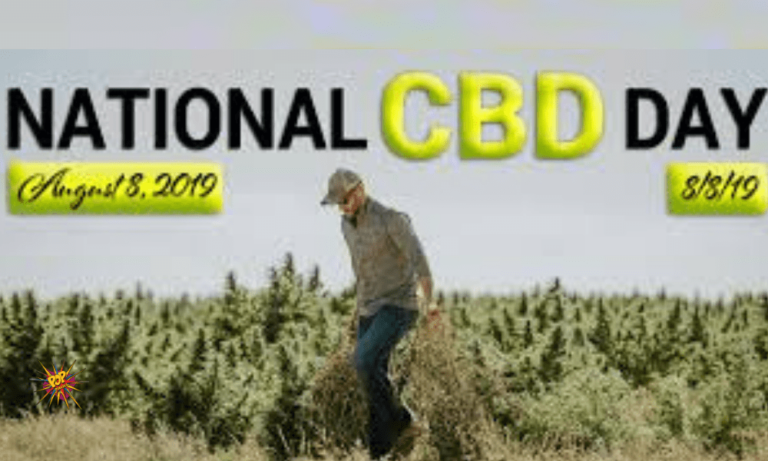5 Major Things That Have Happened Since the First National CBD Day