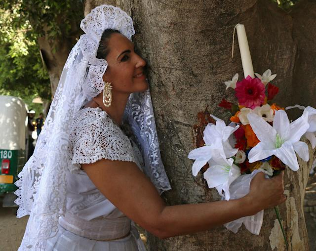 """Marry a tree"" began as a ritual of giving thanks to Mother Earth carried out by the organization ""Bedani,"" and later gave way to a symbolic wedding based on Inca customs where women and men ""marry"" trees in a rite led by Peruvian actor and environmentalist Richard Torres."