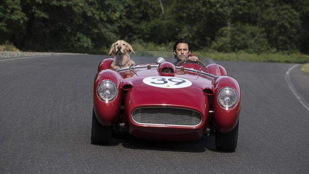 PHOTO: A scene from 'The Art of Racing in the Rain.' (20th Century Fox)