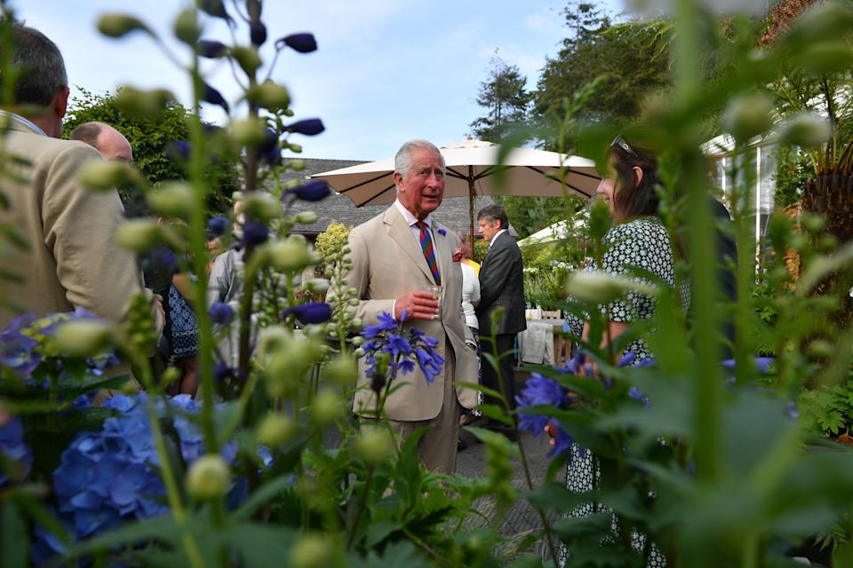 LOSTWITHIEL, ENGLAND - JULY 16: Prince Charles, Prince of Wales attends a reception to celebrate the 50th Anniversary of his chairmanship of the Duchy of Cornwall Prince's Council at the Duchy of Cornwall Nursery in Cott Rd, during an official visit to Devon & Cornwall on July 16, 2019 in Lostwithiel, United Kingdom. (Photo by Ben Birchall - WPA Pool/Getty Images)