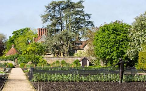 le manoir aux quat'saisons, oxfordshire, vegan cookery school - Credit: MARK LORD