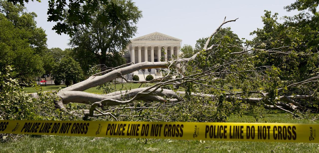 An American beech tree lies on Capitol Hill grounds in Washington, Saturday, June 30, 2012, in front of the U.S. Supreme Court, background, after a powerful storm swept across the Washington region late Friday. Violent storms swept across the eastern U.S., killing at least nine people and knocking out power to hundreds of thousands on a day that temperatures across the region are expected to reach triple-digits. (AP Photo/Manuel Balce Ceneta)
