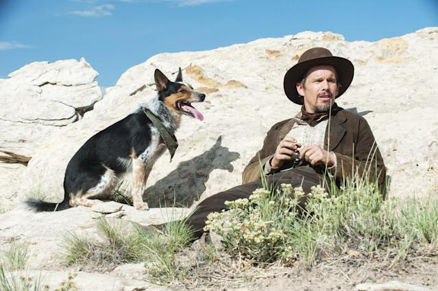 Celebrated canine actor Jumpy stole the show from co-star Ethan Hawke in the 2016 film <em>In a Valley of Violence</em>. (Photo: Lewis Jacobs/Focus Features/Courtesy Everett Collection)
