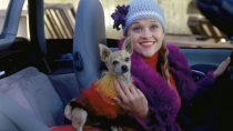 "<p>Question: is there a single Elle look that's <em>not </em>ionic? Answer: No. Wear a red turtleneck, throw on a purple jacket, and pin a flower to your beanie to DIY this look with ease.</p><p>What you'll need: <em>Faux Fur Cardigan Coat, $46.98, Amazon </em><br></p><p><a class=""link rapid-noclick-resp"" href=""https://www.amazon.com/Littleice-Womens-Cardigan-Casual-Overcoat/dp/B07HZ5VKCB/?tag=syn-yahoo-20&ascsubtag=%5Bartid%7C10065.g.28677600%5Bsrc%7Cyahoo-us"" rel=""nofollow noopener"" target=""_blank"" data-ylk=""slk:SHOP NOW"">SHOP NOW</a> </p>"