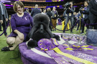 Siba, the standard poodle, and Crystal Murray-Clas, left, pose for photographs after winning Best in Show in the 144th Westminster Kennel Club dog show, Tuesday, Feb. 11, 2020, in New York. (AP Photo/John Minchillo)