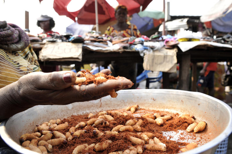 A vendor holds big weevil larvae at Kinshasa's Gambela market
