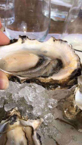 PHOTO: Oysters served at Island Oyster on Governor's Island will be stored and recycled in partnership with the Billion Oyster Project. (ABC News, Kelly McCarthy)