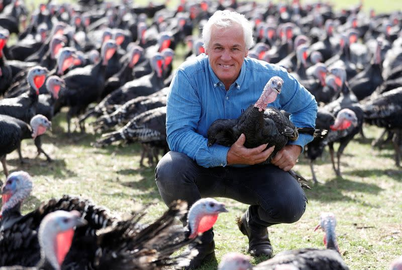 Turkey farmer Paul Kelly poses for a photograph at his farm in Chelmsford