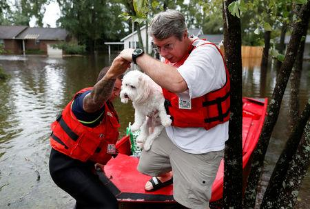 Roger Hedgpeth, carrying his dog Bodie, gets help getting to higher ground via the United States Coast Guard during Tropical Storm Florence in Lumberton, North Carolina, U.S. September 16, 2018.  REUTERS/Randall Hill
