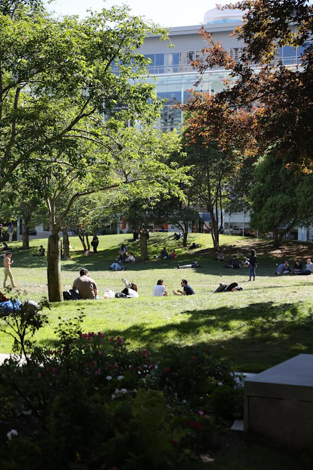 <p>Prior to setting up shop, make sure you find the perfect spot to sit. Whether it's in the shade, in the sun, or in a place that has the best of both worlds, this will ensure that you won't have to move around mid-picnic.</p>